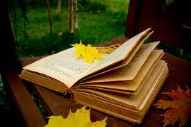 Hva skjer på biblioteket i høst?